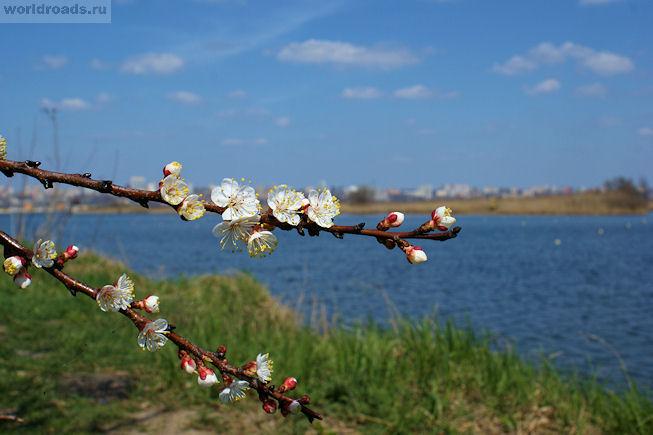 Гребной канал Ростов