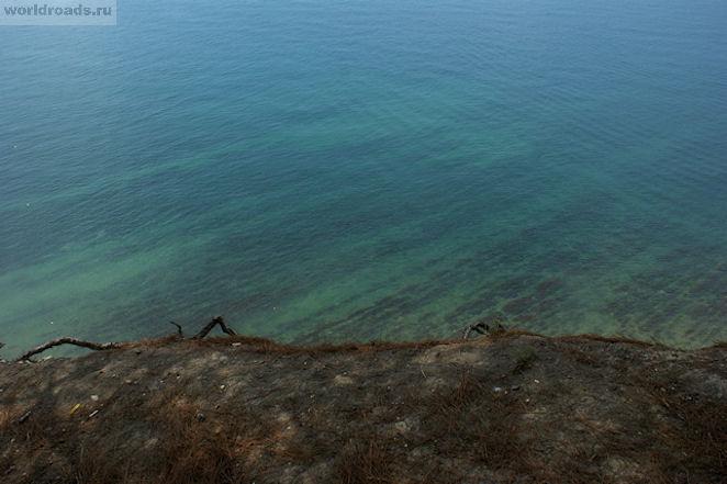 Сосновая роща Дивноморск
