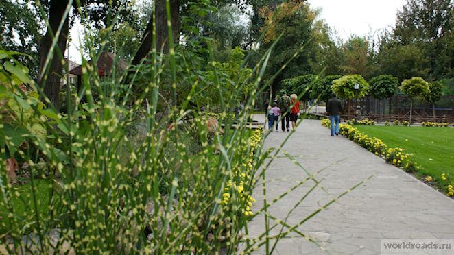 Парк в Старой Станице