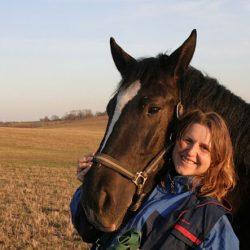Год Лошади – счастливый год!