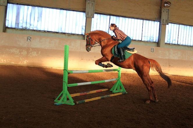 Прыжок на лошади