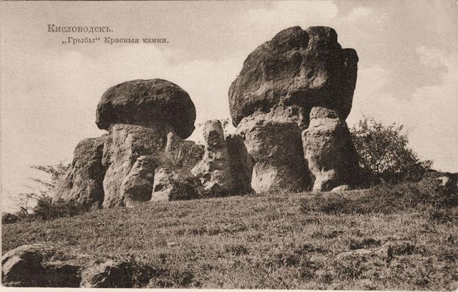 Красные грибы старинная открытка