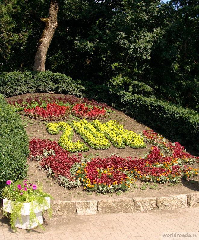 Цветочный календарь Железноводс