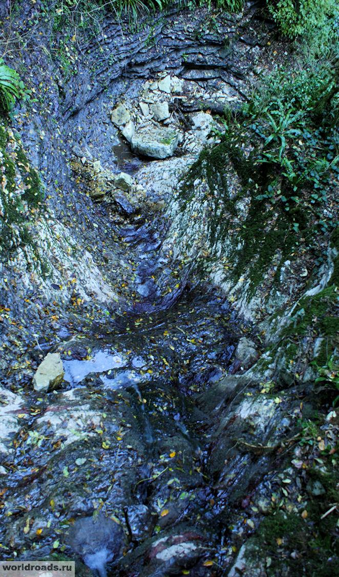 Тисо-самшитовая роща водопад