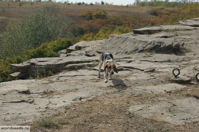 Ближние скалы