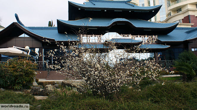 Японский сад Сочи