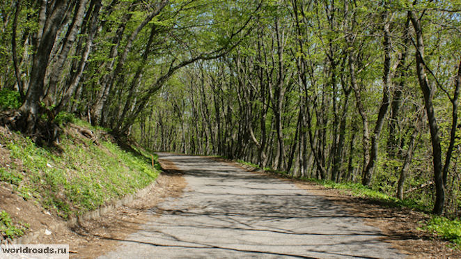 Дорога с Машука