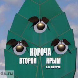 Город Короча Белгородской области