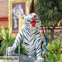 Храм пещеры тигра Ват Там Суа (Wat Tham Sua)