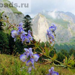 Тропа на Водопадистый (Пшехский водопад)
