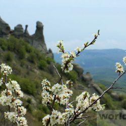 Путешествие в Крым в мае