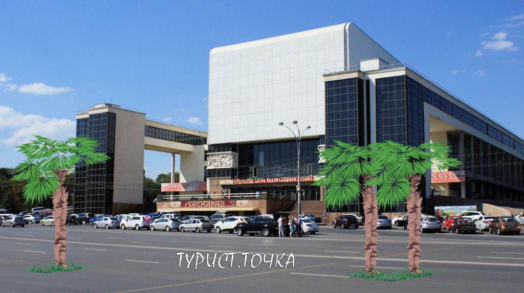 Пальмы в Ростове