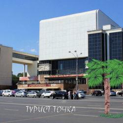 В Ростове-на-Дону растут пальмы, а зимой -45°C