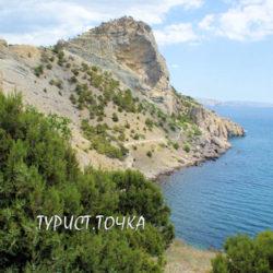 Реликтовая можжевеловая роща в Новом Свете, Крым